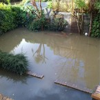 The 'swimming pool' in the back garden of TheJournal.ie reader @BKatieB/Katie Baynes