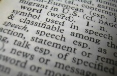 New words: the official* glossary of 2011