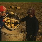 Schools didn't open until potatoes were harvested!