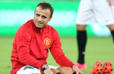 QPR chief Mark Hughes denies Berbatov link