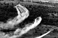 Agent Orange clean-up launched in Vietnam decades after war ends