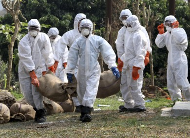 Officials carry culled birds in sacks at a poultry farm after bird flu virus was detected earlier this year