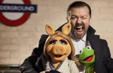 The new Muppet movie looks brilliant!