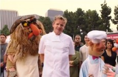 WATCH: Gordon Ramsay takes on the Swedish Chef from the Muppets